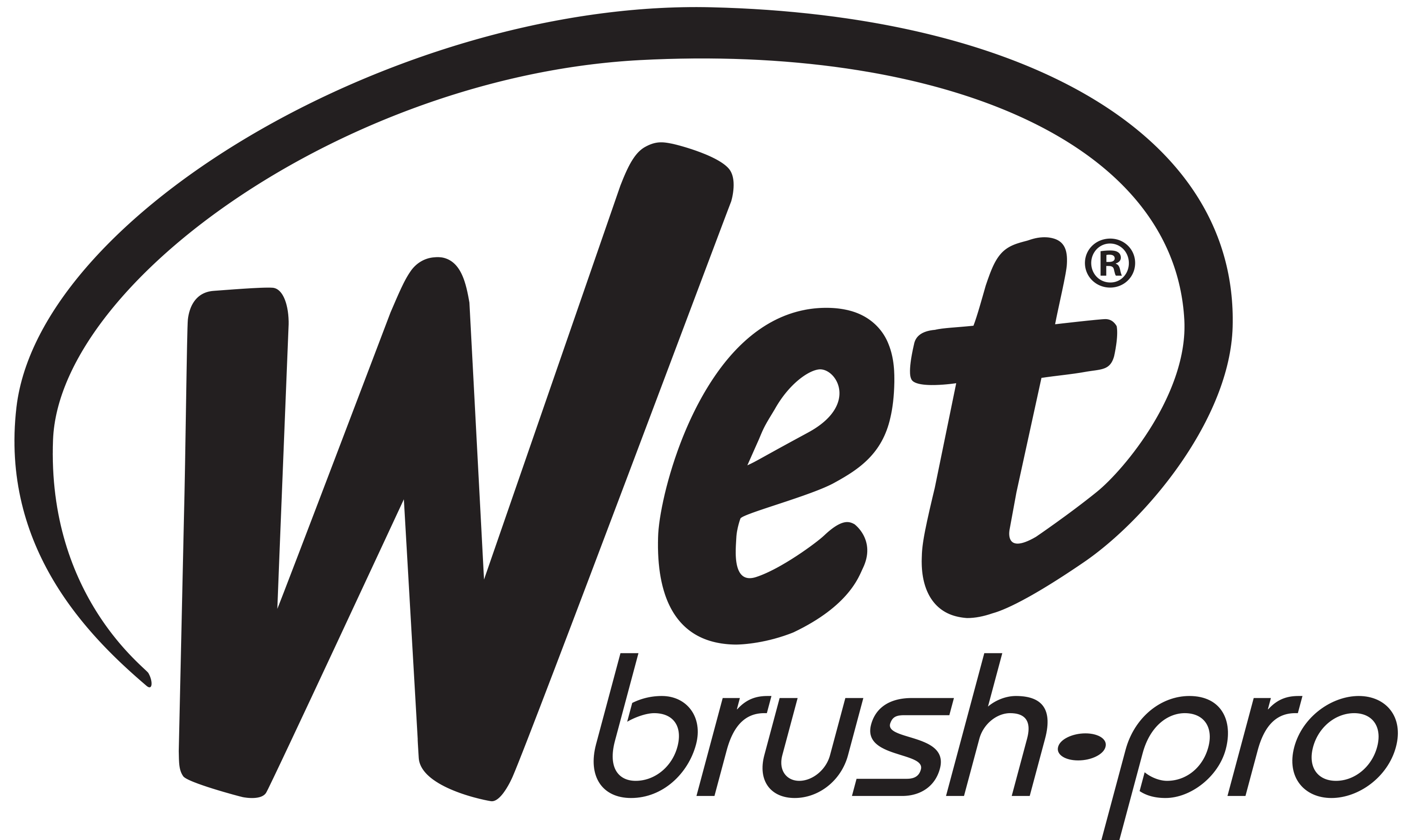 The Wet Brush®